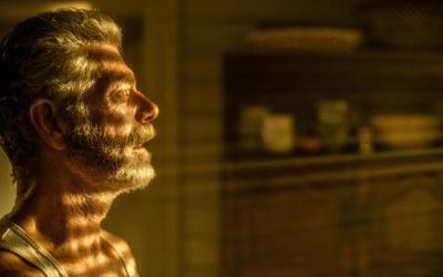 Le Souffle Coupé – Critique de Don't Breathe